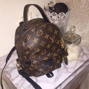 Louis Vuitton Palm Springs Mini Backpack